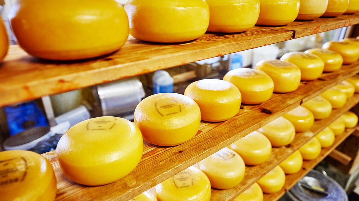 Nizozemski sirevi, putovanje u Amsterdam avionom, garantirani polazak