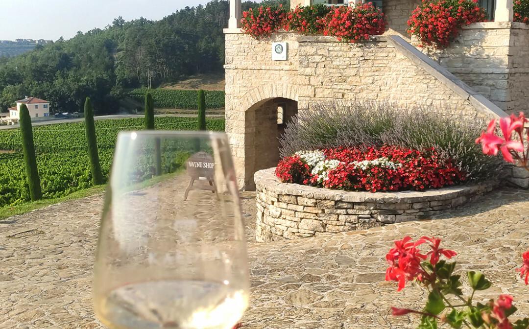vinarija kabola, mondo travel izlet u istru