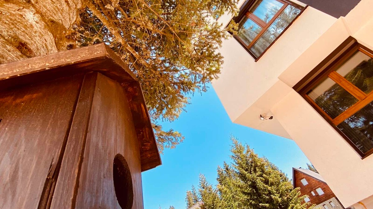 Jahorina, Apartmani Gorstak, kućica za ptice