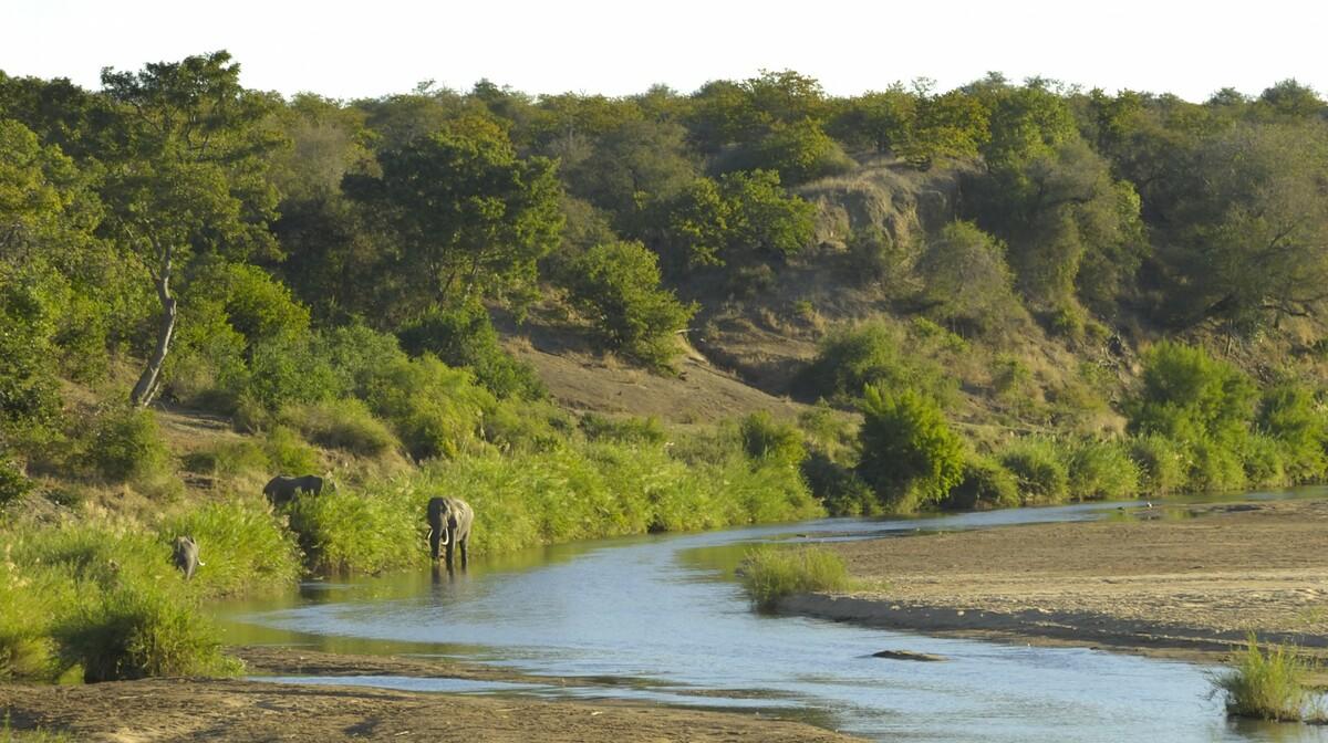 Južna Afrika - rijeka Letaba