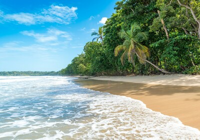 Kostarika, Cahuita, garantirani polasci, putovanja sa pratiteljem, vođene ture