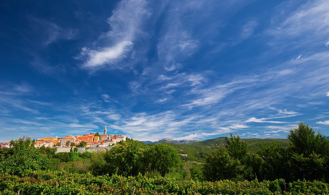 Istra mondo travel, panorama grada Labina