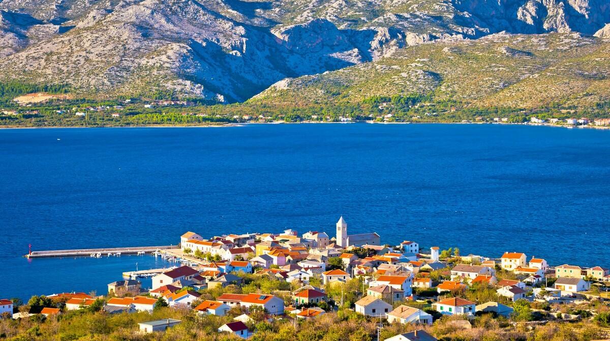 Vinjarac, Hrvatska