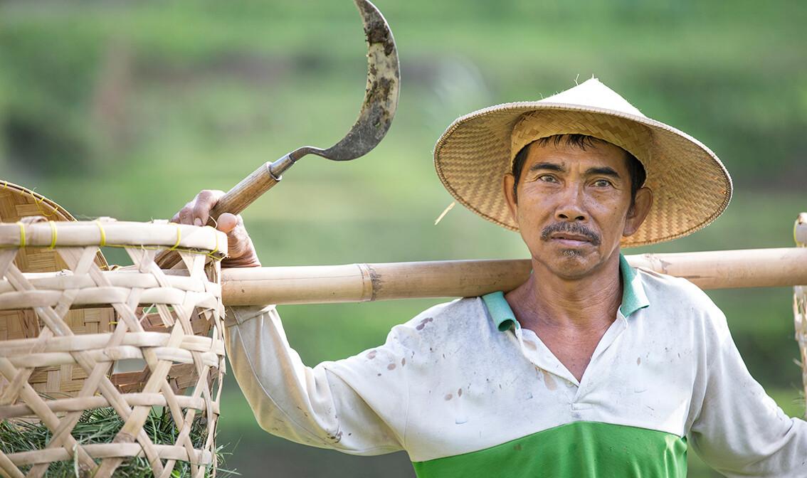 uzgajivač riže, putovanja zrakoplovom, Mondo travel, daleka putovanja, garantirani polazak