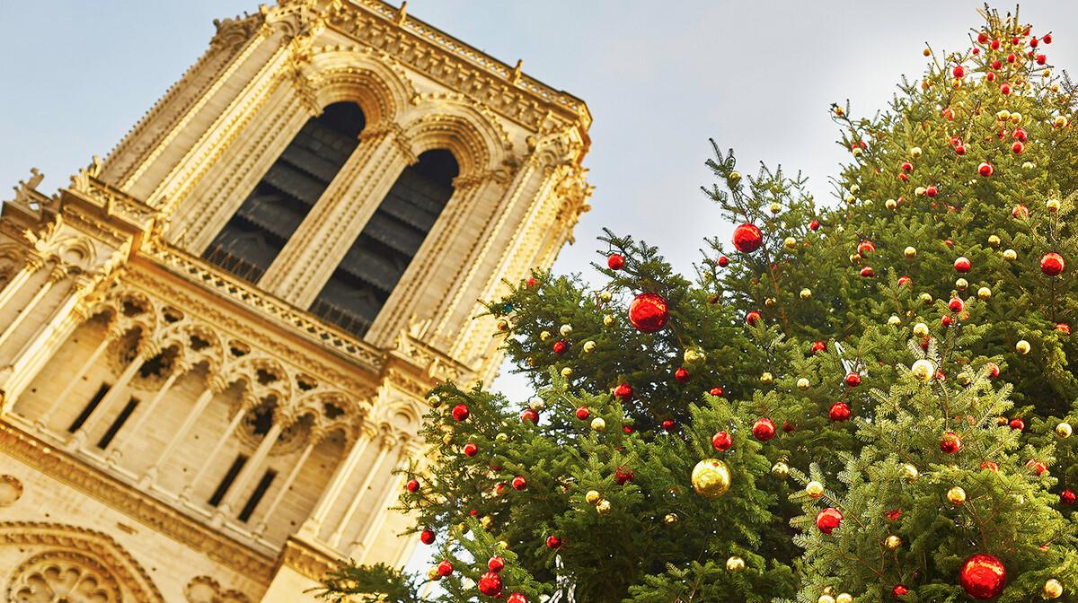 Okićeni bor ispred crkve Notre Dame  u Parizu, advent u Parizu