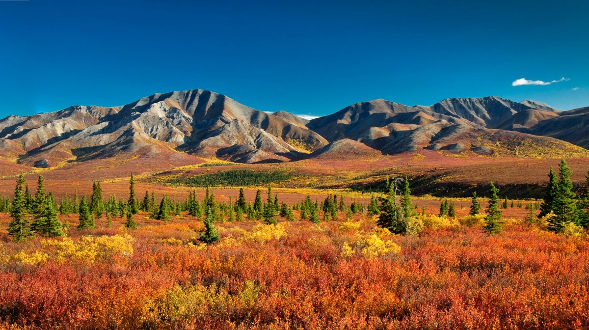 Aljaska nacionalni park prekrasni pejsaž