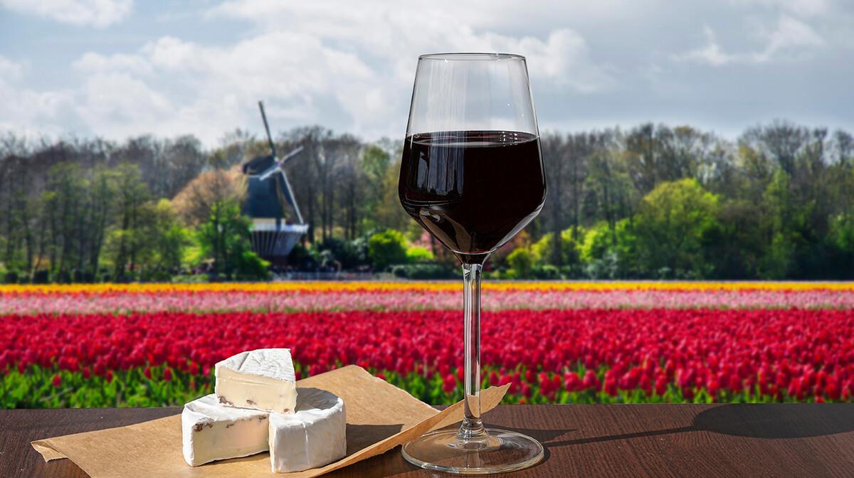 Amsterdam i nizozemska putovanje, polja tulipana, vjetrenjača, sir i vino