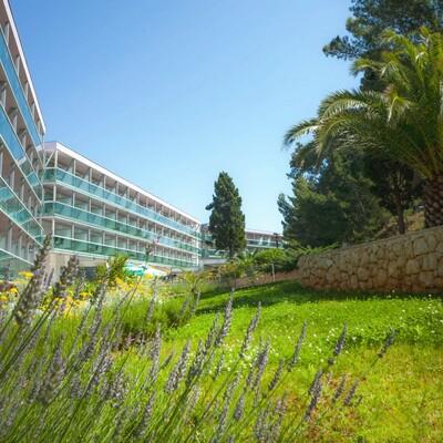 Mediteranski vrt hotela Aurora u Malom Lošinju.