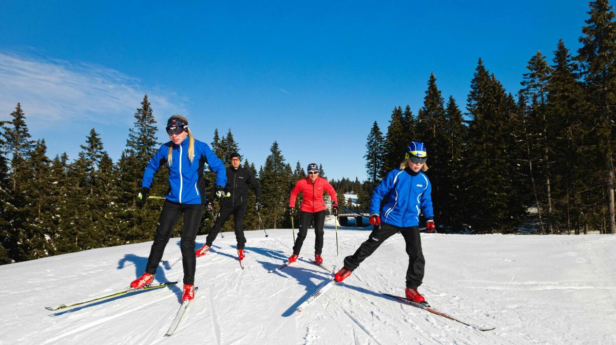 Rogla, nordijsko skijanje