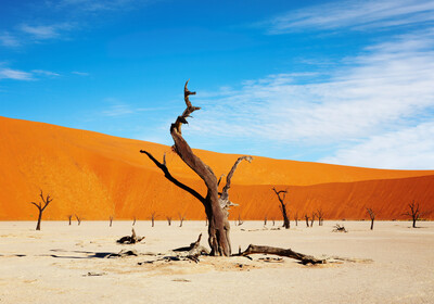 Namibija, pustinja Sossusvlei