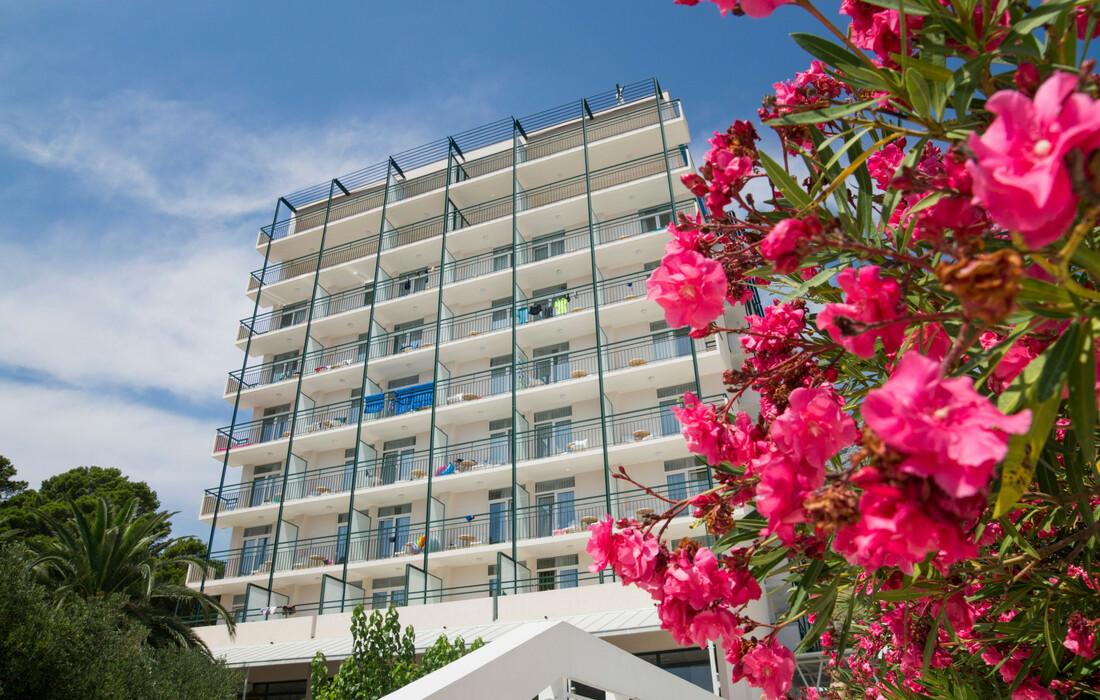 Tučepi, Bluesun hotel Neptun i depandansa Maslinik, izgled hotela