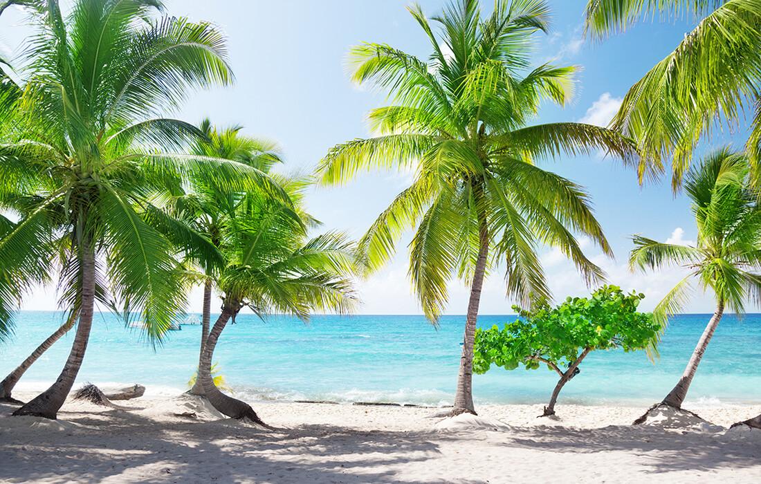 Pješčana plaža otok Catalina, odmor Dominikanska republika, karibi, odmor iz snova, daleka putovanja